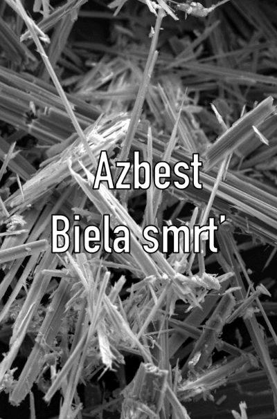 Azbest : biela smrť (2011)